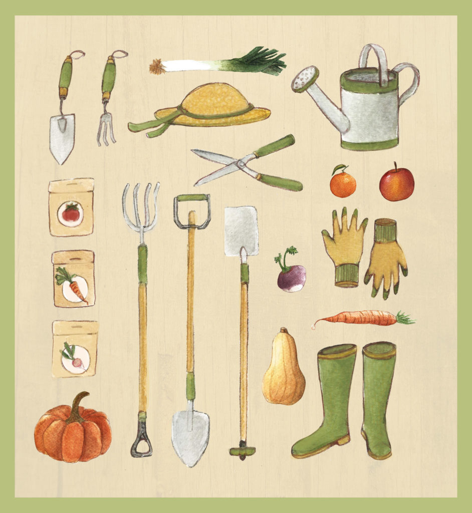 Illustration potager motif légumes fruits jardin océane azeau