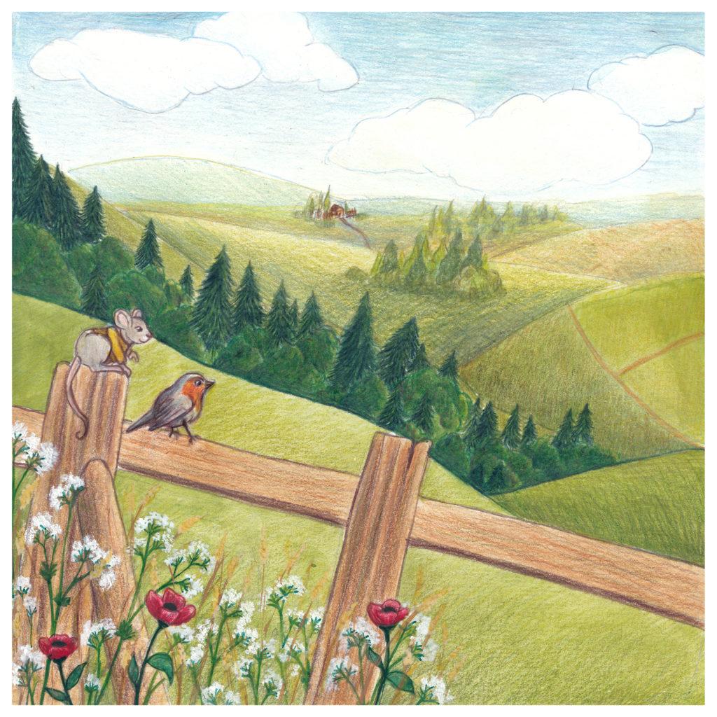illustration collines souris crayon