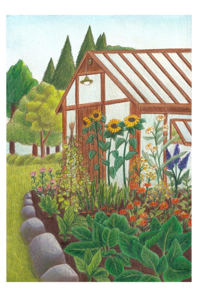 illustration jardin coloré