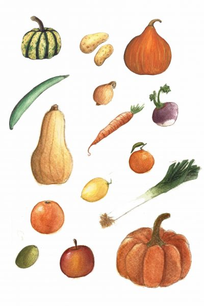 Illustration Légumes Fruits océane azeau illustratrice
