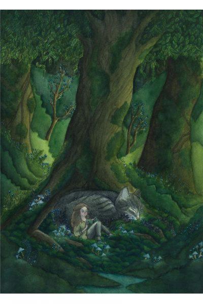 Illustration conte fantasy jeunesse chat forêt océane azeau